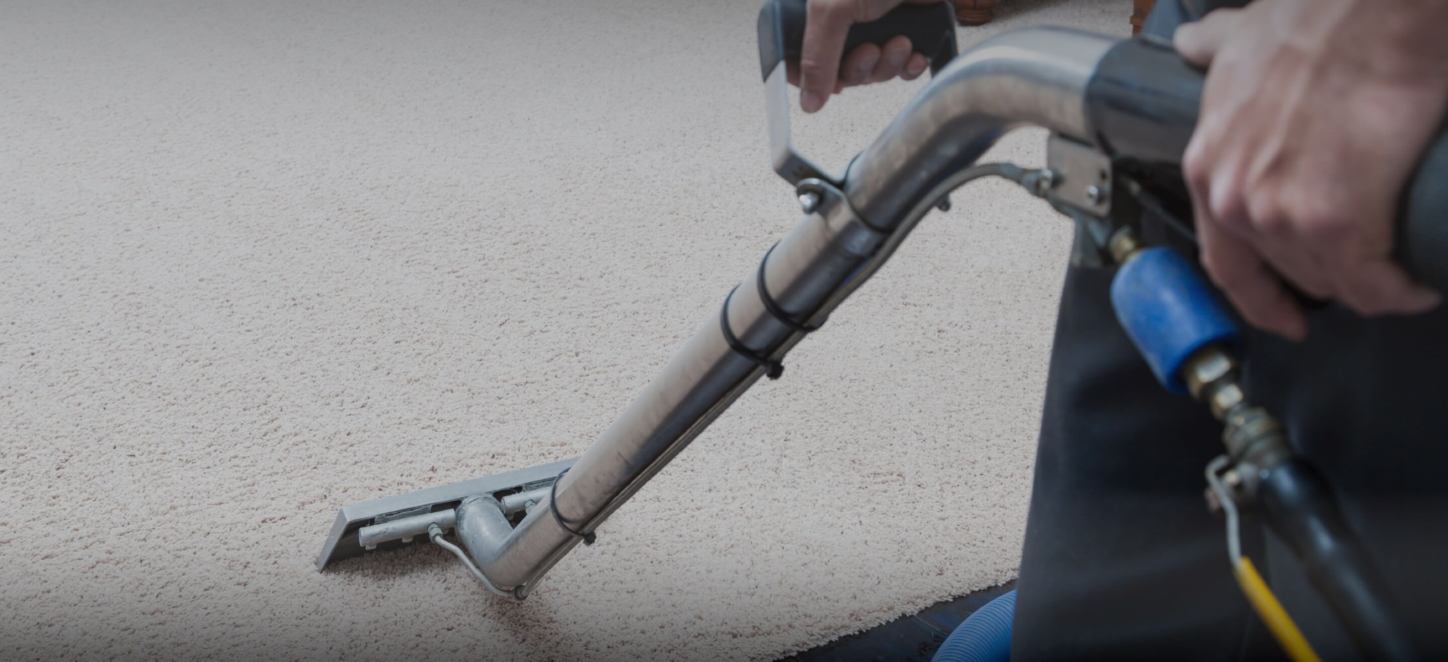 carpet cleaning services in winter garden 34787 quality local